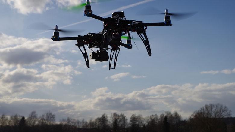 Para participantes de expedição nos EUA, tecnologia não substitui ida ao campo